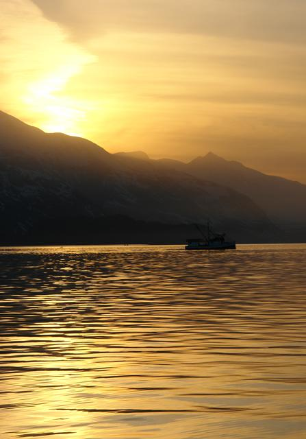 Golden-Sunset-with-Trawler.jpg