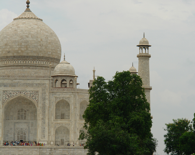 Right-Taj.jpg