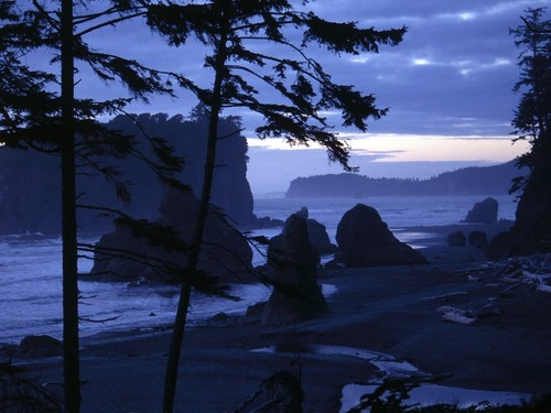 ruby_beach__olympic_national_park__washington.jpg